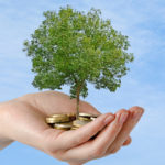 sustainable investment for growth